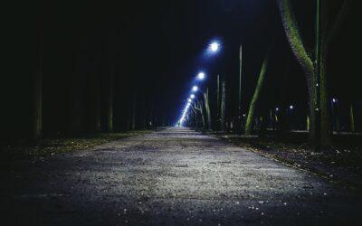 Neues Internetportal für die Straßenbeleuchtung der Stadt Bitterfeld-Wolfen